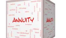 Income Annuity Decision: Start Now or Wait Until Later?
